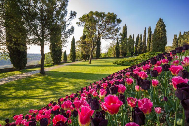 Tulipanomania al Parco Sigurtà fino al 30 Aprile 2017